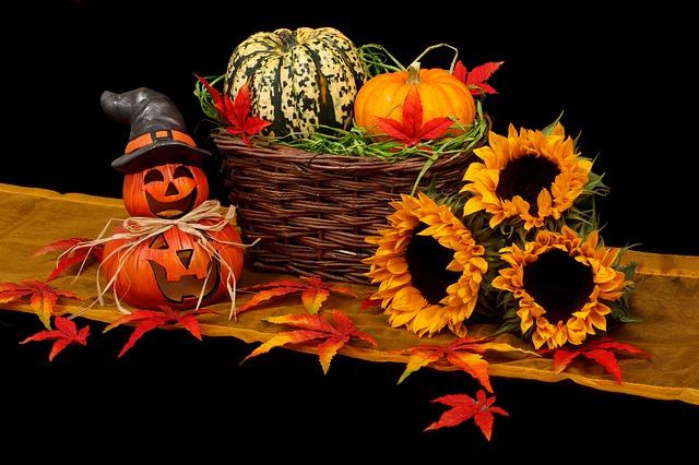 autumn-20461_640.jpg