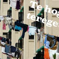 A teregetés nagymesterei - szomszédtípusok a ruhaszárítás terén