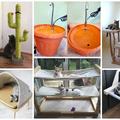 Házi készítésű felszerelések imádott cicádnak