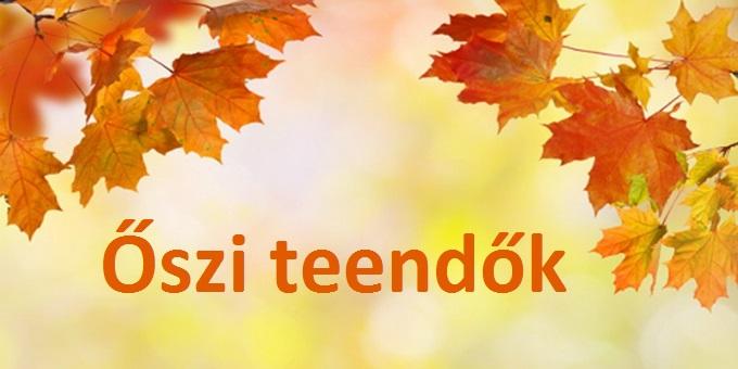 oszi_teendok_lakasban_71.jpg