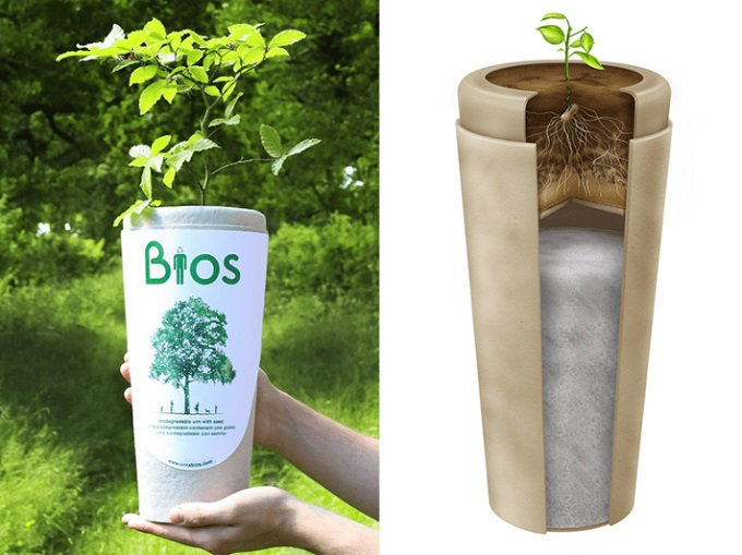 bios_bio_urna.jpg