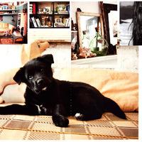 Vintage remekmű: Helena Christensen otthona
