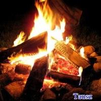 Tűzrakás (szabadban)