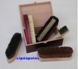 cipoapolas2.jpg
