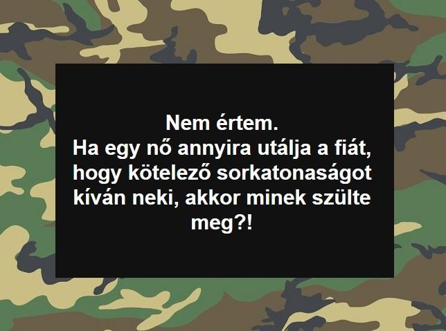 minek_szult_mem.jpg