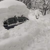 Ausztria: van, ahol 3 méteres hó esett, kidőlt fa zuhant egy gyorsvonatra