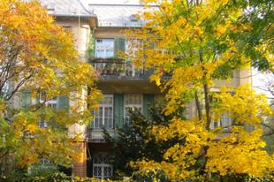 A Hegyvidék ősszel