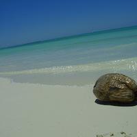 Utazás a Paradicsomban - Iaai