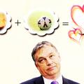 Politikusaink megmutatják, hogy lesz egyszerű flörtből párkapcsolat
