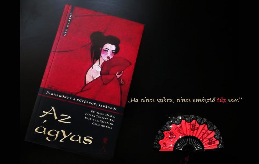 az_agyas_konyv.jpg