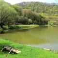 Gyönyörű kirándulóhely és istenifinom hekk? Akkor Malom-völgy! :)