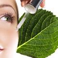 Növényi őssejttel a fiatal bőrért