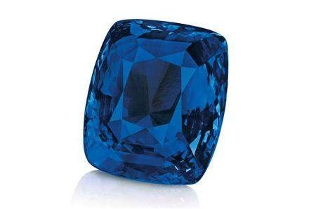 blue_belle_of_asia_3.jpg