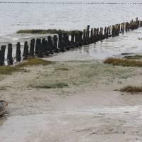 Watt-tenger, Fríz-szigetek és Fekete Nap: Dánia ritkán említett természeti kincsei