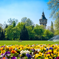 Magyar kikelet, avagy hazajönni minden tavasszal
