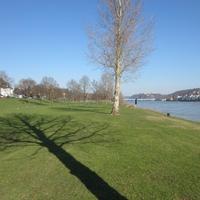 Otthonról haza - Honvágy Koblenzben és Budapesten