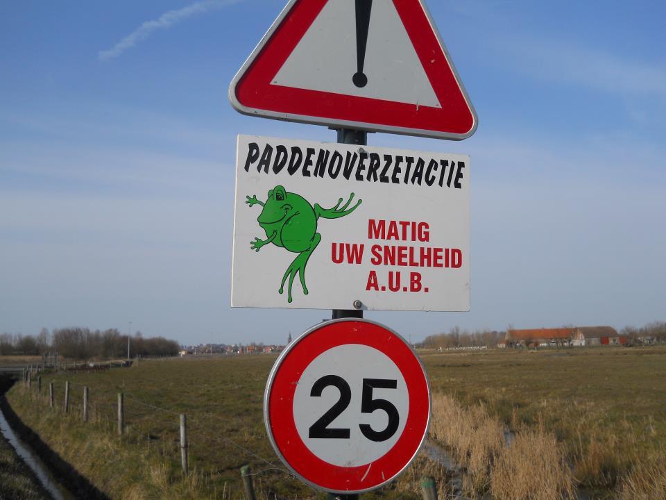 A tábla pontos fordítása elég nevetséges: varangyok transzfer akció. Biciklis kirándulásaink során több helyen láttam ilyen a táblát a vizes kanálisok mentén. Gondolom a békák védelmére vannak kihelyezve. - (Fotó: Botos Zsuzsanna)