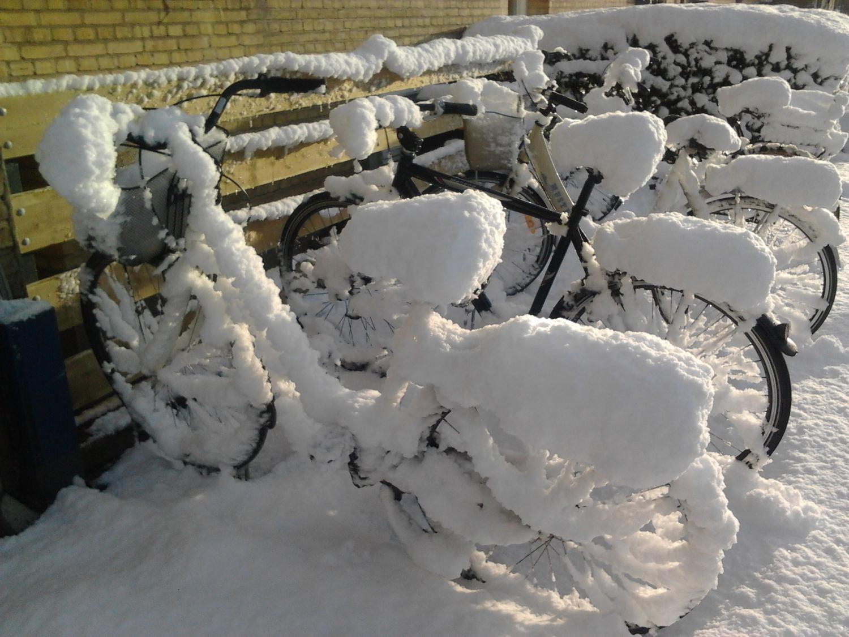 Reggeli meglepetés december elsején. Dániára jellemző a kiszámíthatatlan az időjárás – viszont az is előfordul, hogy egy évszak napra pontosan érkezik. Jó példa erre 2013 legelső téli napja, amikor a jó öreg biciklimet váratlanul bekebelezte a hó, én pedig loholhattam a munkába reményvesztve. - (Fotó: Könyves Viki)