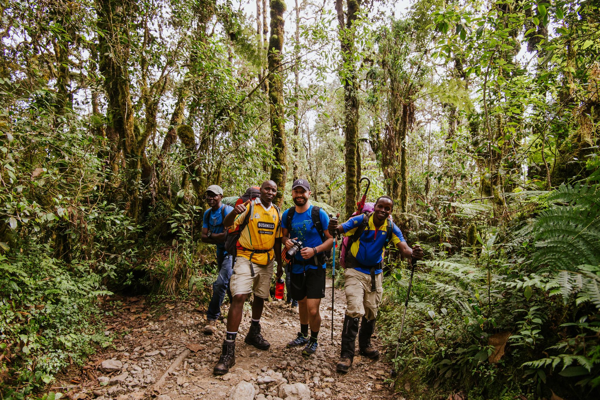 Felfele a Kilimandzsáró dzsungelében (Fotó: Mózes Tamás)