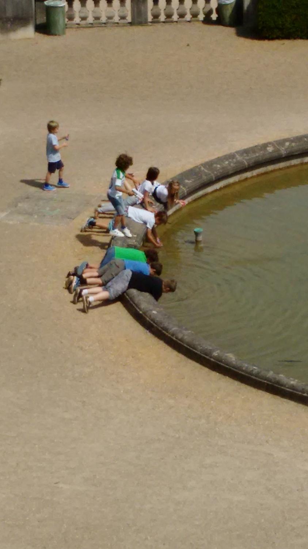 Itt a nyár, és a gyerekek élvezik a jó időt a parkban. Hajókat úsztatnak vagy csak begurult a labdájuk, ki tudja. - (Fotó: Szerencsés Hella)