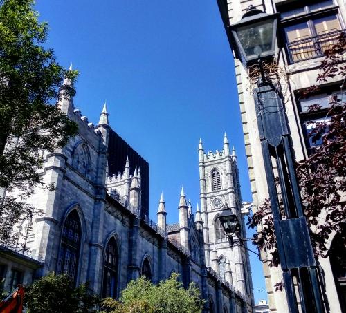 Belvárosi látkép a Notre Dame tornyaival a háttérben (Fotó: Takácsy Dorka)