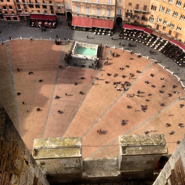 Siena (Fotó: Nyitrai Réka Viktória)