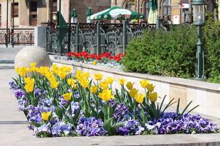 Drágakövektől a Pálinkamustráig: tavasznyitó programok Miskolcon