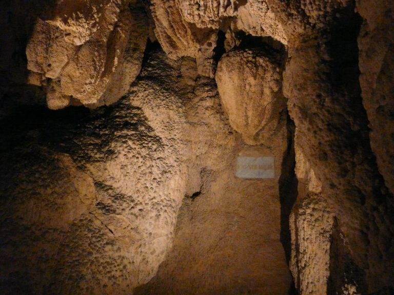 anna-barlang-nj-1-768x576.jpg