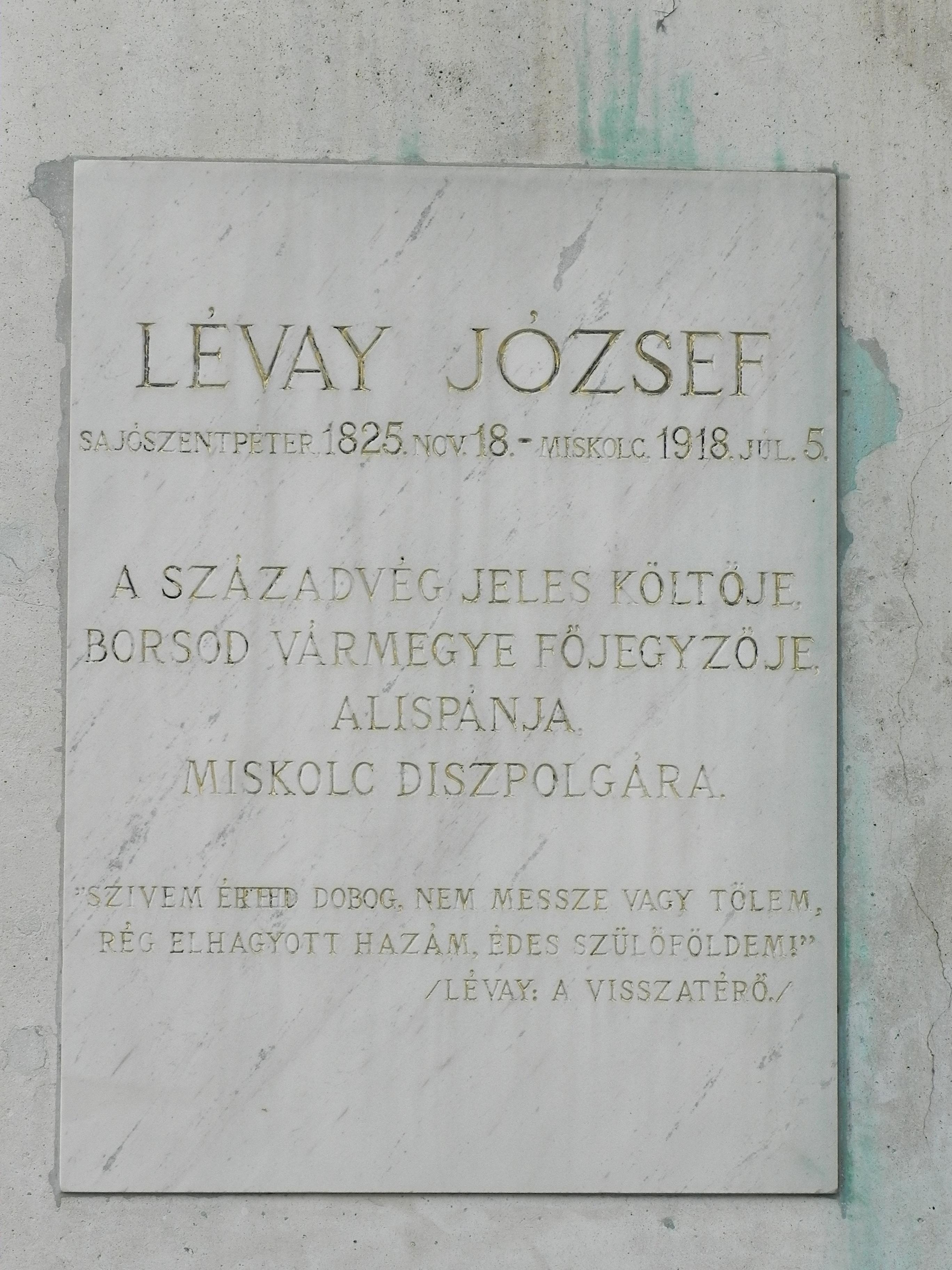levay_jozsef_szobra_pd_2.JPG