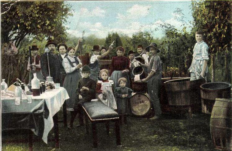 Miskolc szőlőhegyeiről (1856)