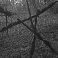 Film: Ideglelés - The Blair Witch Project (1999)