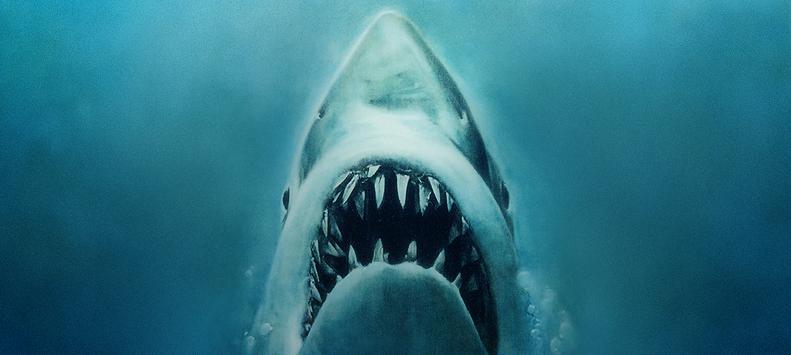 jaws_movie.jpg