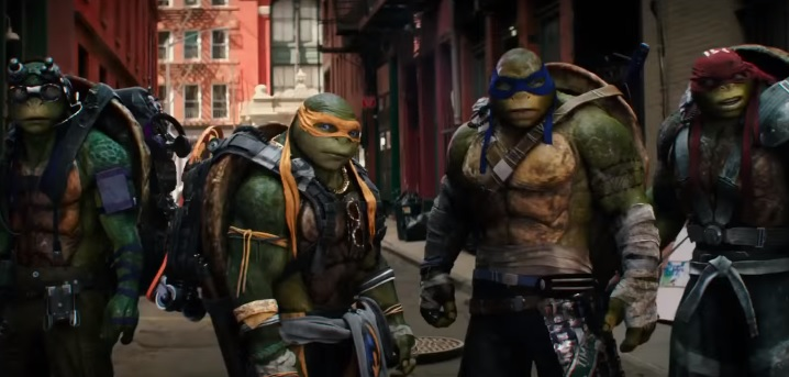 turtles_2_tr.jpg