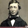 Július 24.: Thoreau-t börtönbe zárják, mert nem fizetett fejadót (1846)