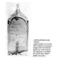 Pálinkafa- Pálinkafőzés a Dél-Borsodban 2. rész