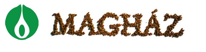 maghaz-logo.jpg