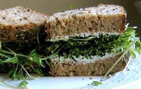 csira-szendvics.jpg