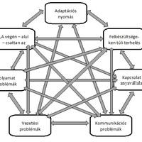 Adaptációs problémák - szervezeti