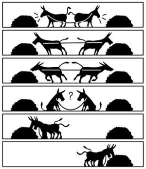 donkey-cooperation-300x347.jpg