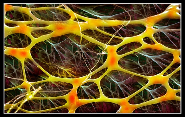 microscopic-large.jpg