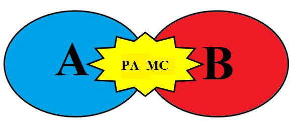 paca_1.png