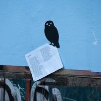 A költészet világnapja - posztolj verset az utcára!
