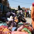 Relax Nouakchottban, halleves és újabb buli. A Hetes busz a szavannák felé vette az irányt.
