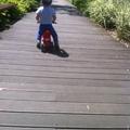 Ötlet gyereknapra: kalandparkozás közben jegeskávé