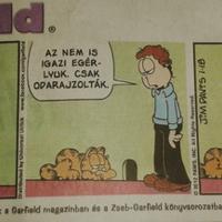 Andris is talált egy Garfield-ot...