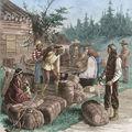 A Hudson-öböl Társaság