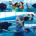 Hydrotherapy Workshop again #doglover #ruffwear #hydrotherapy #caninerehab #dog