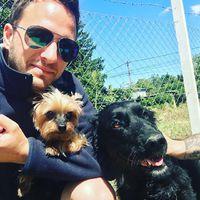 Interview #sushi #bogyo #hydrotherapy #dogstagram #caninerehab #dog #ruffwear