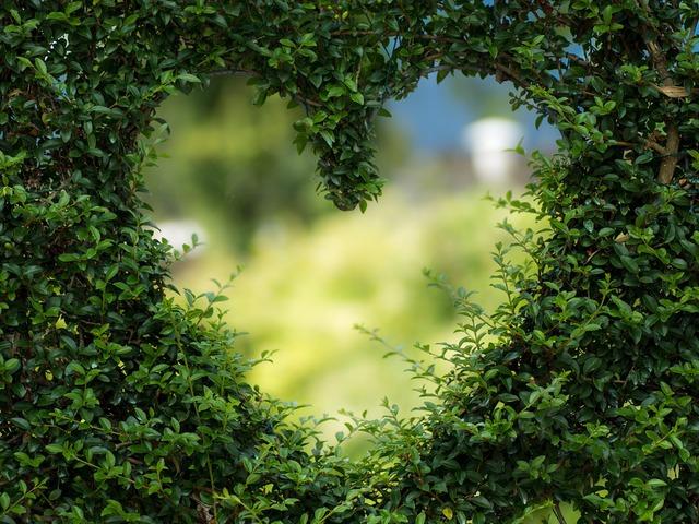 Régimódi szerelmeslevél 2. - A Férfinak