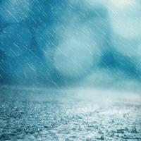 Hinni a tavaszi esőben - novella